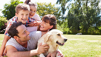 Kansas City Family enjoying a mosquito free backyard