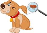Cartoon dog itching with flea bites