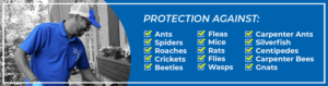 List of insects included in the Home Protection program - Blue Beetle Pest Control