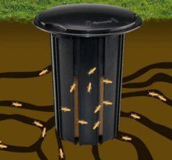 advanced-termite-bait-station-evosmarketing-1504-11-EvosMarketing@1