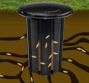 Illustration of a termite bait station