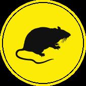 Mouse Rat Icon - Blue Beetle Pest Control