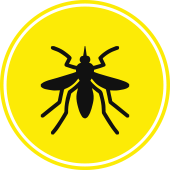 Mosquito icon - Blue Beetle