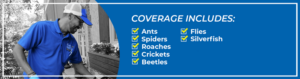Banner for Basic Home Protection Program - Blue Beetle Pest Control