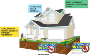 Services included in the Basic Home Protection Program Blue Beetle Pest Control