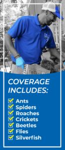 Mobile banner for Basic Home Protection Program - Blue Beetle Pest Control