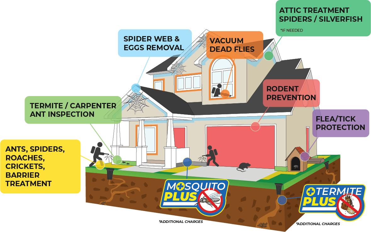 Illustration of the Premium happy home program services Premium Home Protection Program Services - Blue Beetle Pest Control