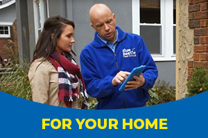 Home protection pest service in Kansas City, MO - Blue Beetle Pest Control