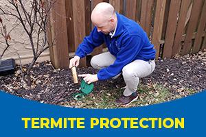 Termite Technician - Blue Beetle Pest Control