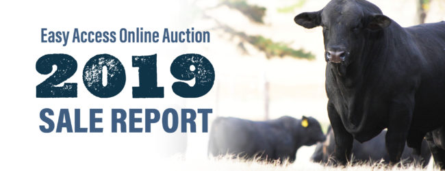 Easy Access Online Auction 2019 Sale Report