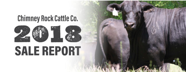 Chimney Rock Cattle Company 2018 Sale Report