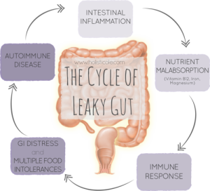 leaky-gut-cycle
