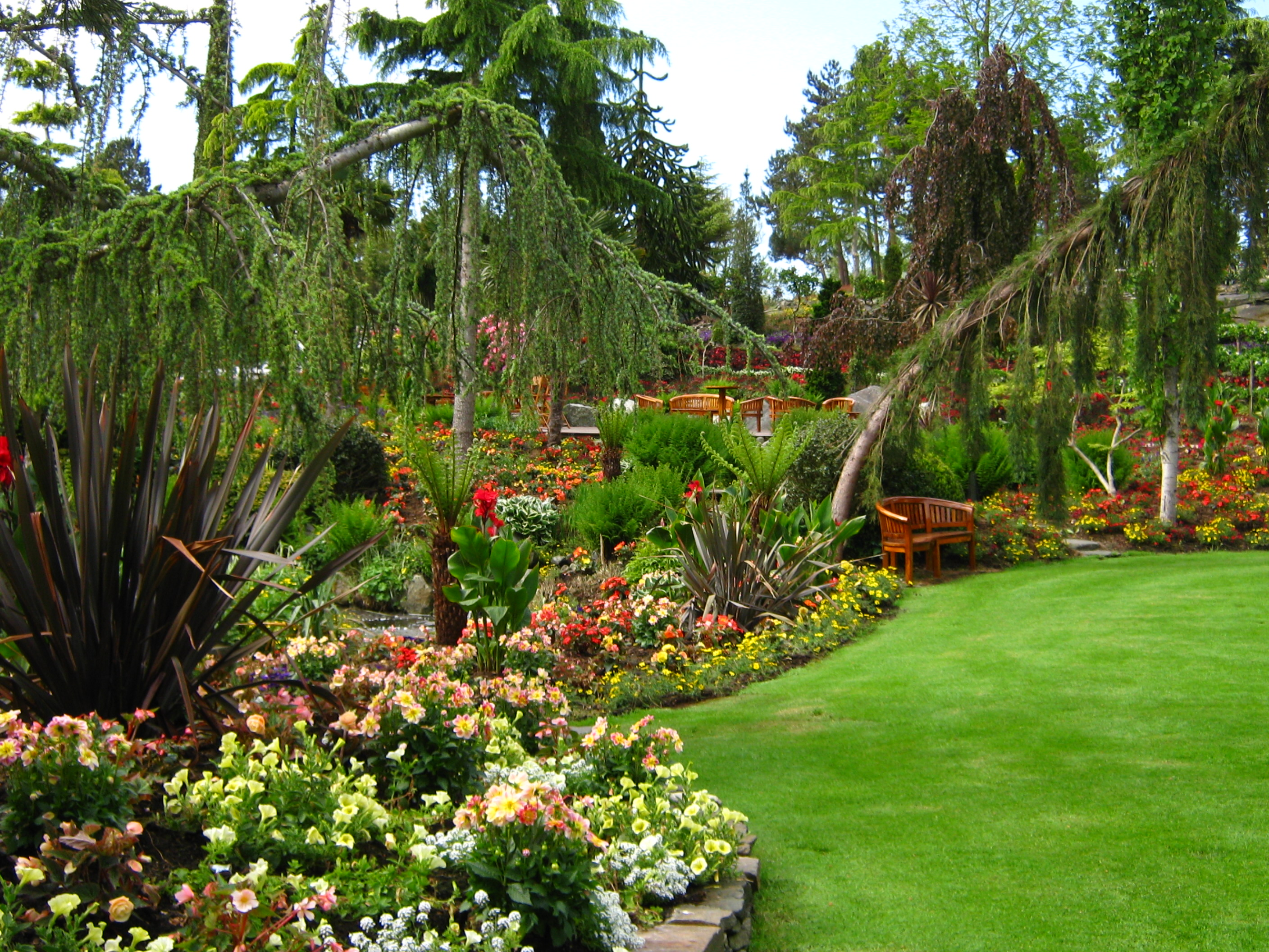 Florida friendly annuals, shrubs, trees and more make a sustainable, beautiful landscape design