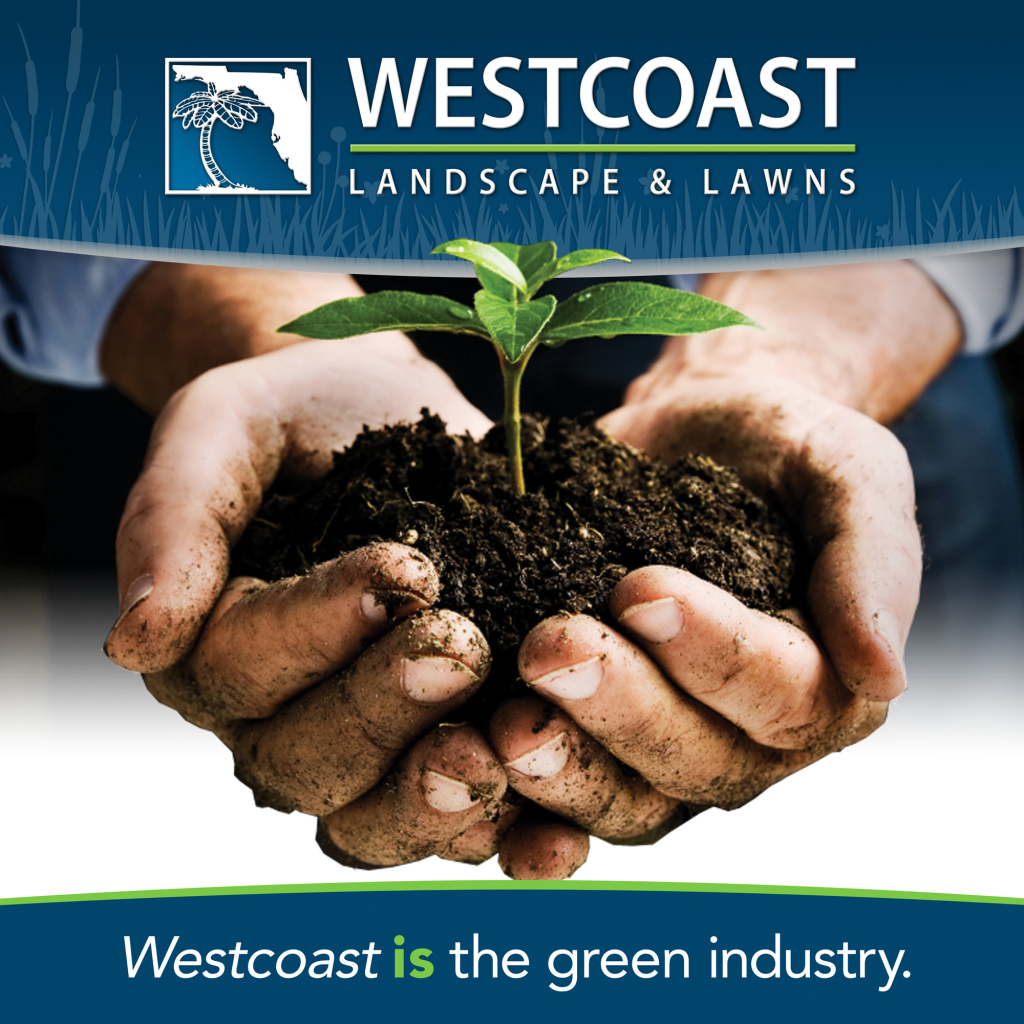 Westcoast landscape contractor IS the green industry