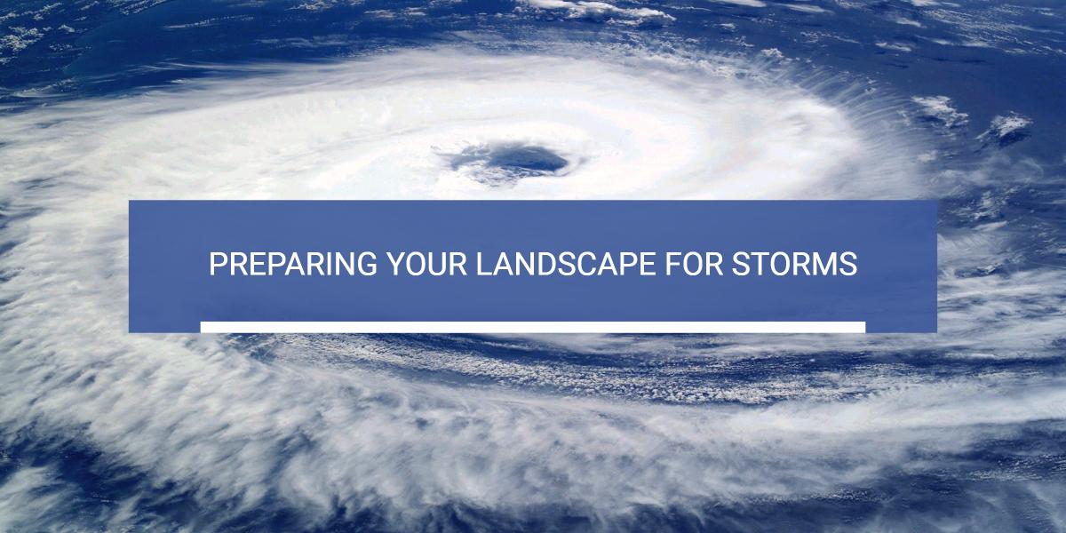 lawn and landscape storm preparation