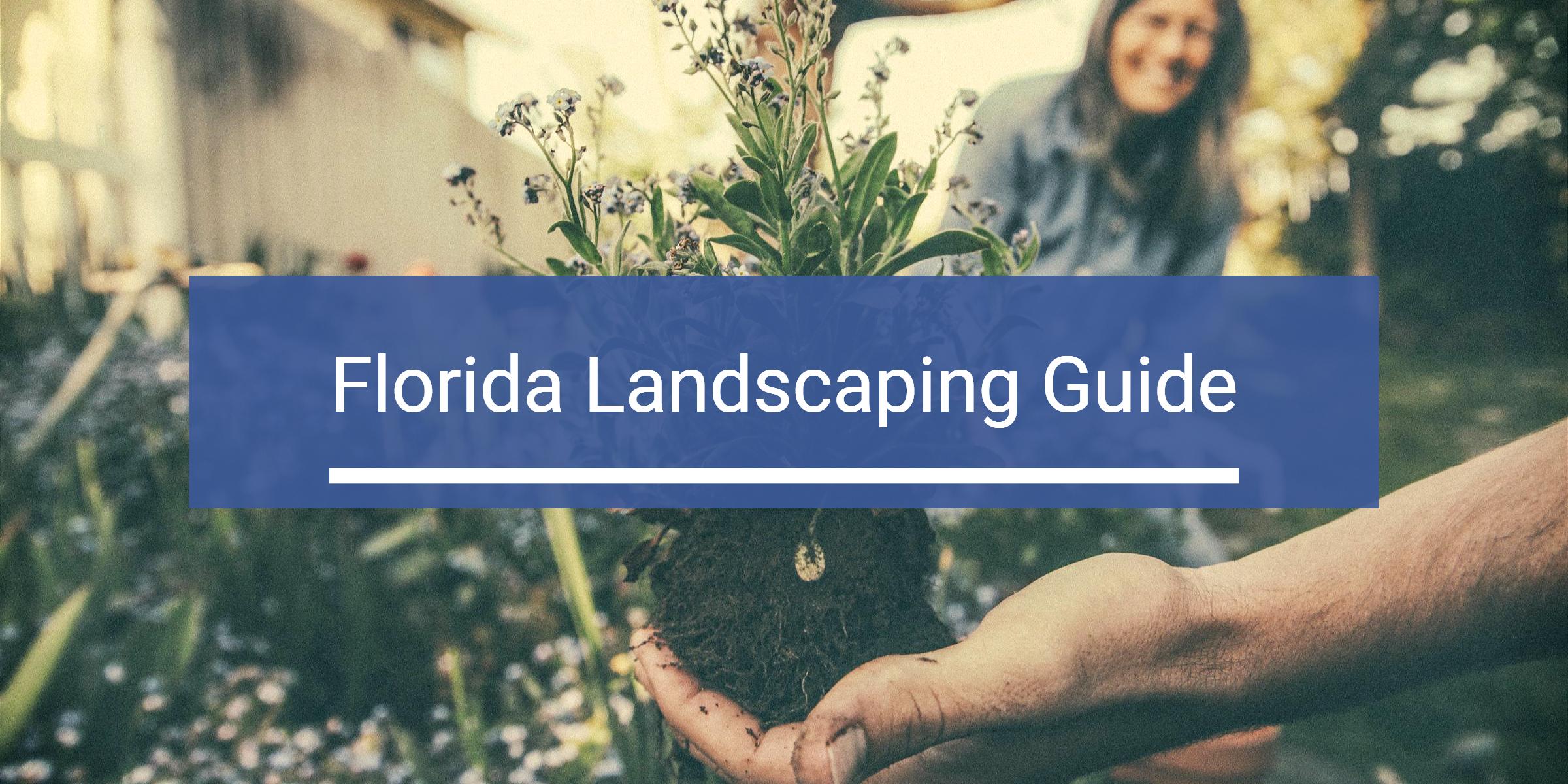 Florida Landscaping Guide Header Image