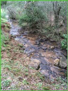 Mountain Creek Flows by a Number of Our Campsites