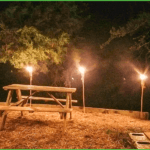 Picnic Under the Lights at Grand View Campground