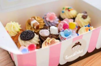 kawaii cupcake miniatures