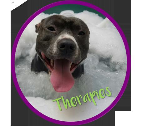 GBT therapies circle