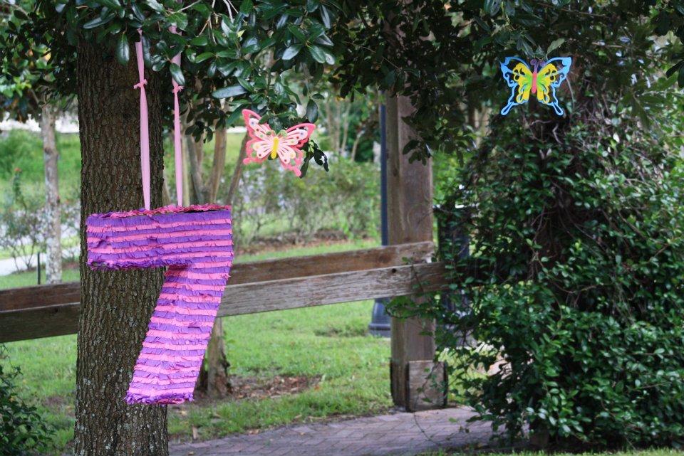 Birthday Party Piñata