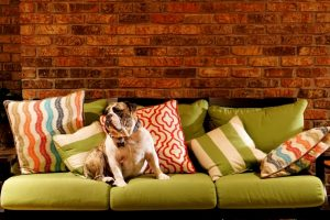 Mix and match pillows on a sofa with color families