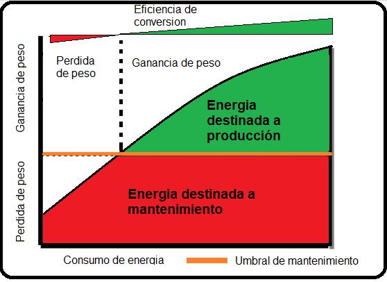 Consumo de energia y eficiencia de conversion