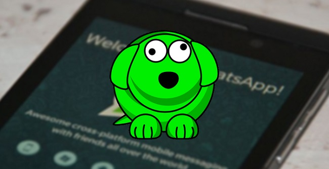 WhatsDog APK For iOS & android