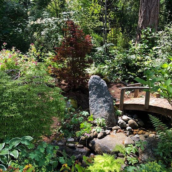 A photo of a lush backyard garden with a wooden bridge.