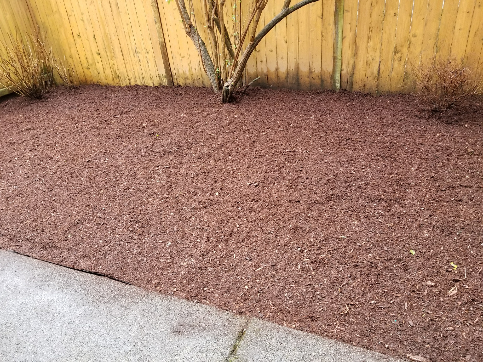 A photo of a yard with new mulch.