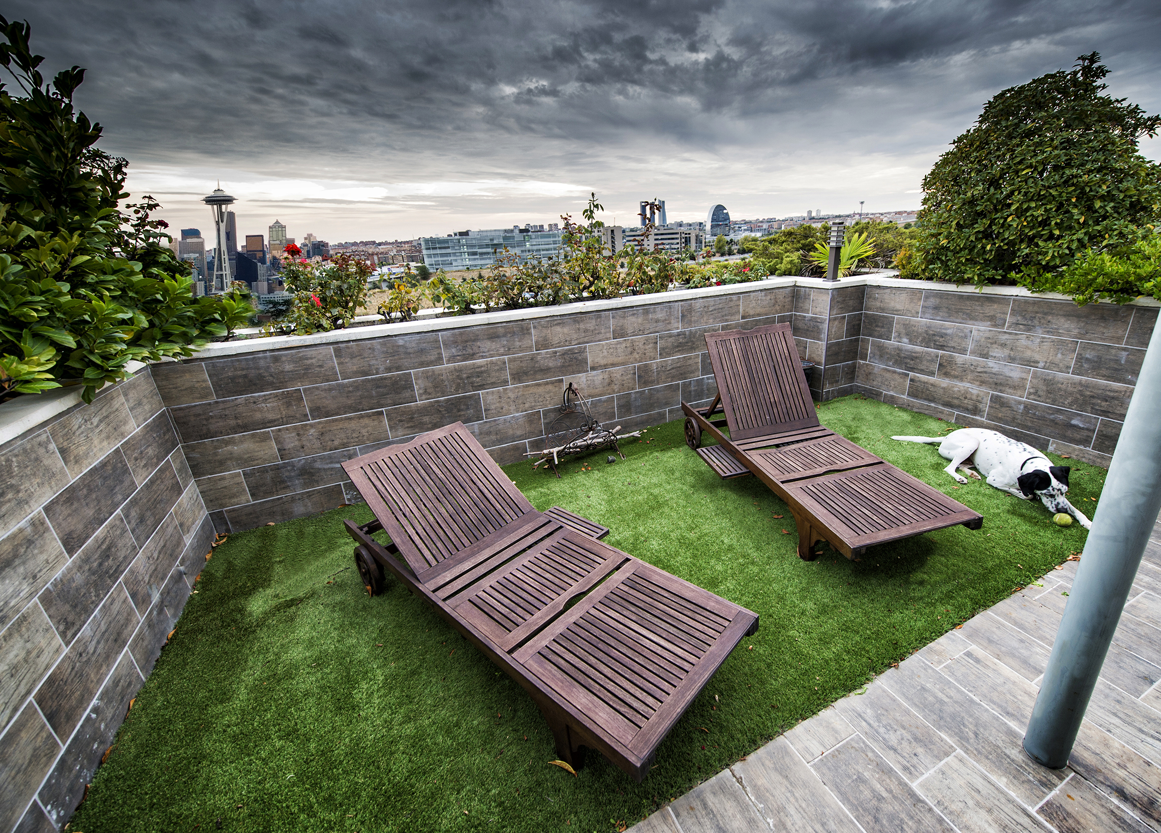 A photo of a backyard garden with two chairs and a dog. The Seattle skyline is visible.