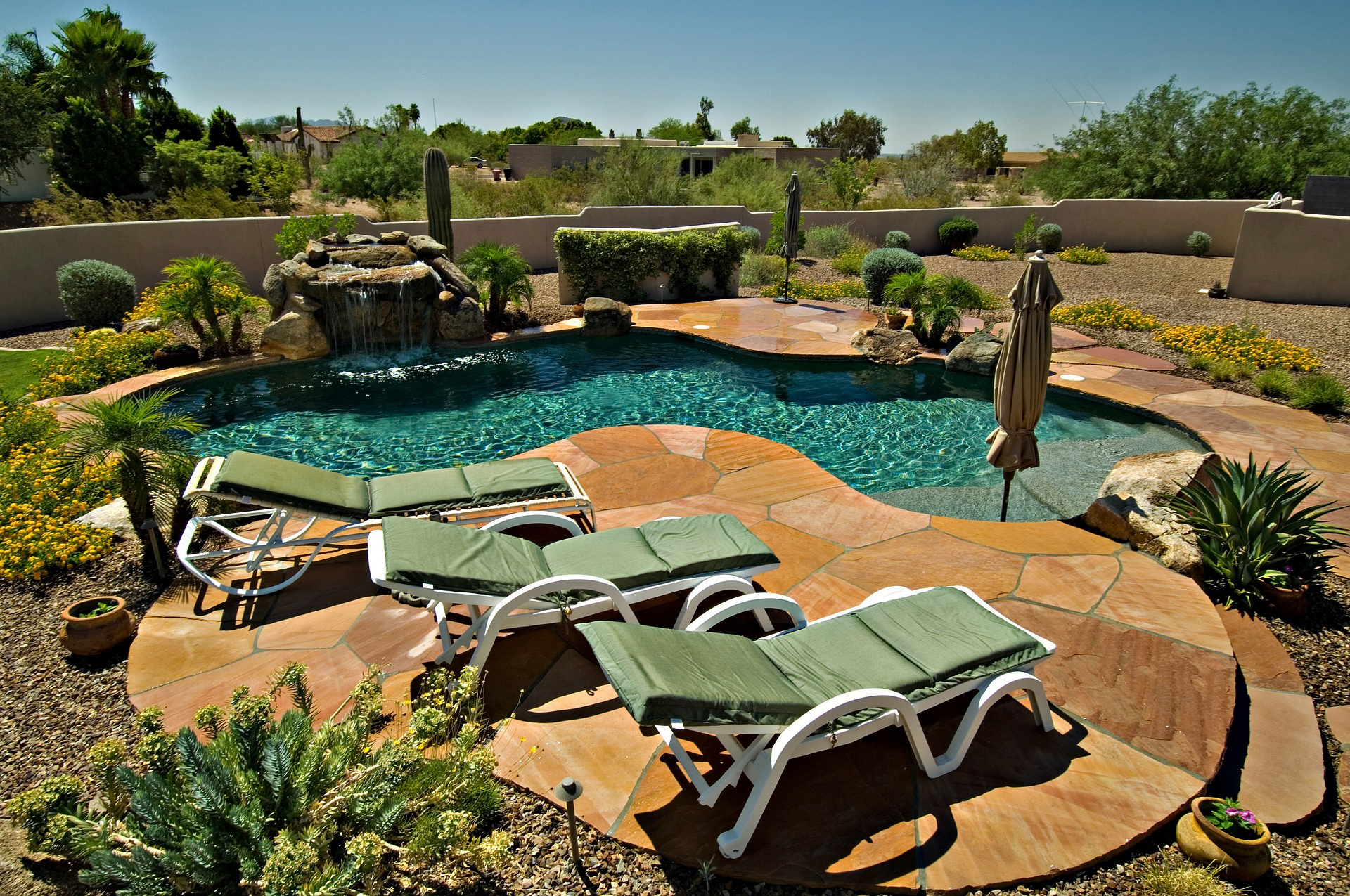 A photo of a backyard pool with desert plants.