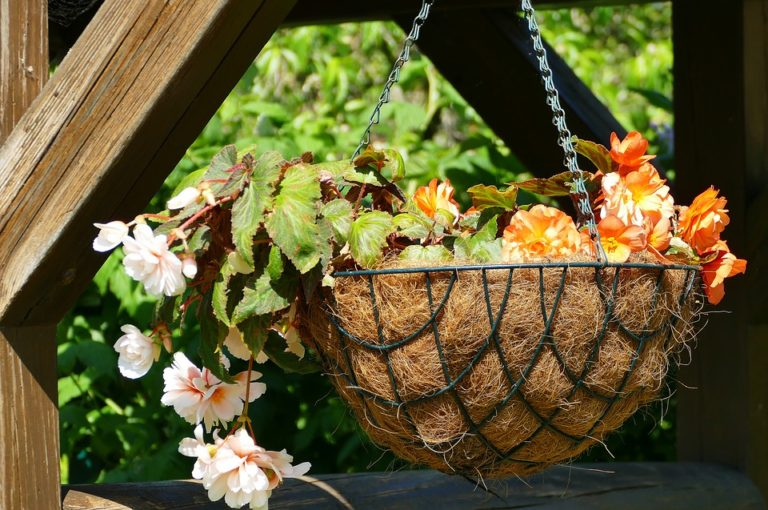 A photo of a hanging plant basket.
