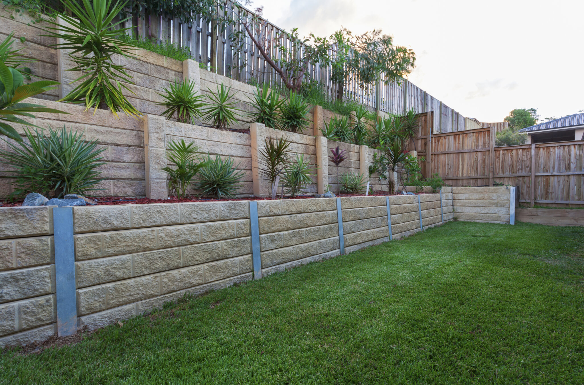 A multi-level retaining wall with plants in a backyard.