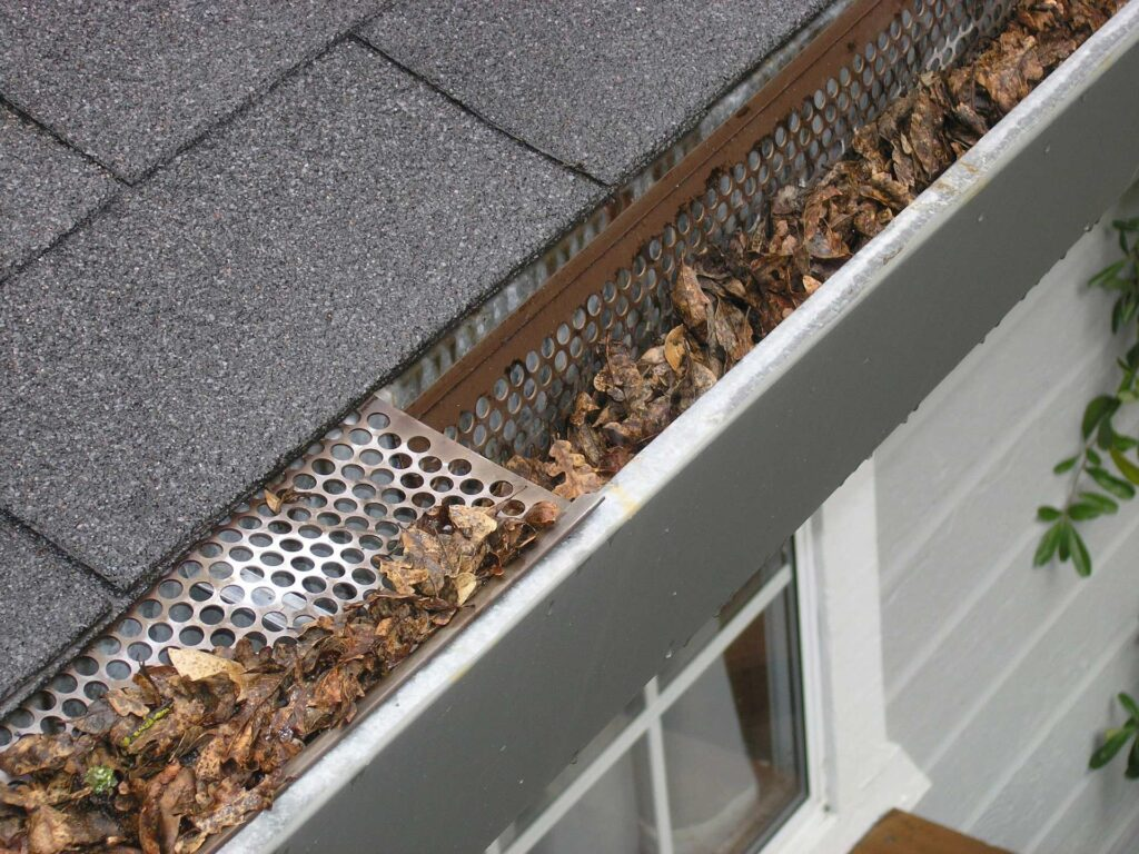 Leaves in a silver gutter of a house