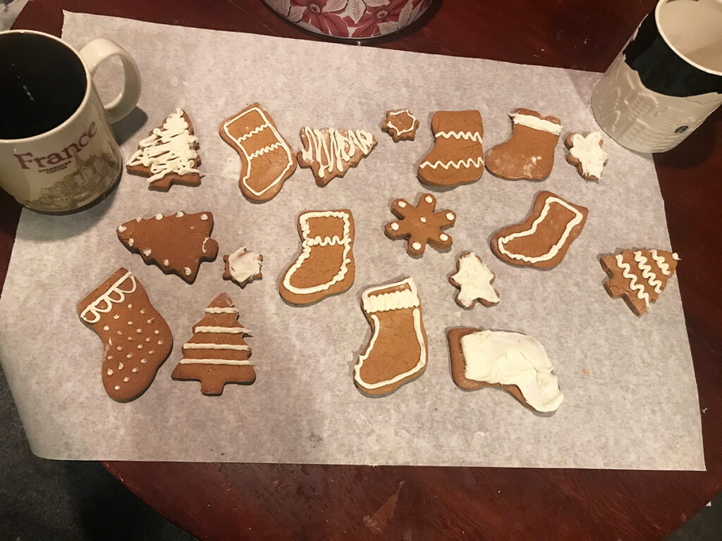 finished gingerbread cookies froested
