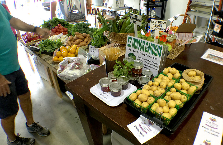 Warehouse Market at the Urban Farming Institute
