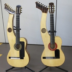 27.Sean Woolley harp guitars