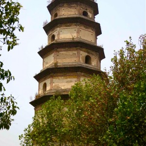 25.-Ancient-Pagoda-with-Trees-John Doan