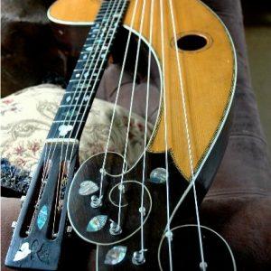 dyer-harp-guitar-2
