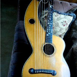dyer-harp-guitar-3