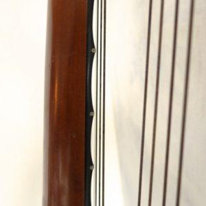 Goltz Lute Guitar 15