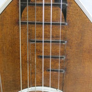 Goltz Lute Guitar 8