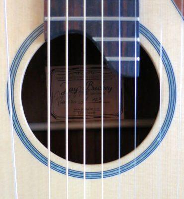 harp-guitar-ukraine-4