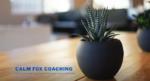 Calm Fox Coaching
