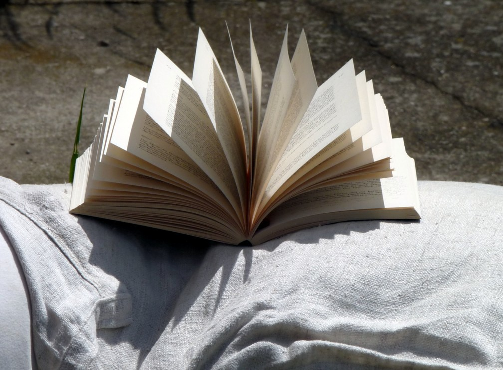 A book lying open outside in the sunlight with pages fanned