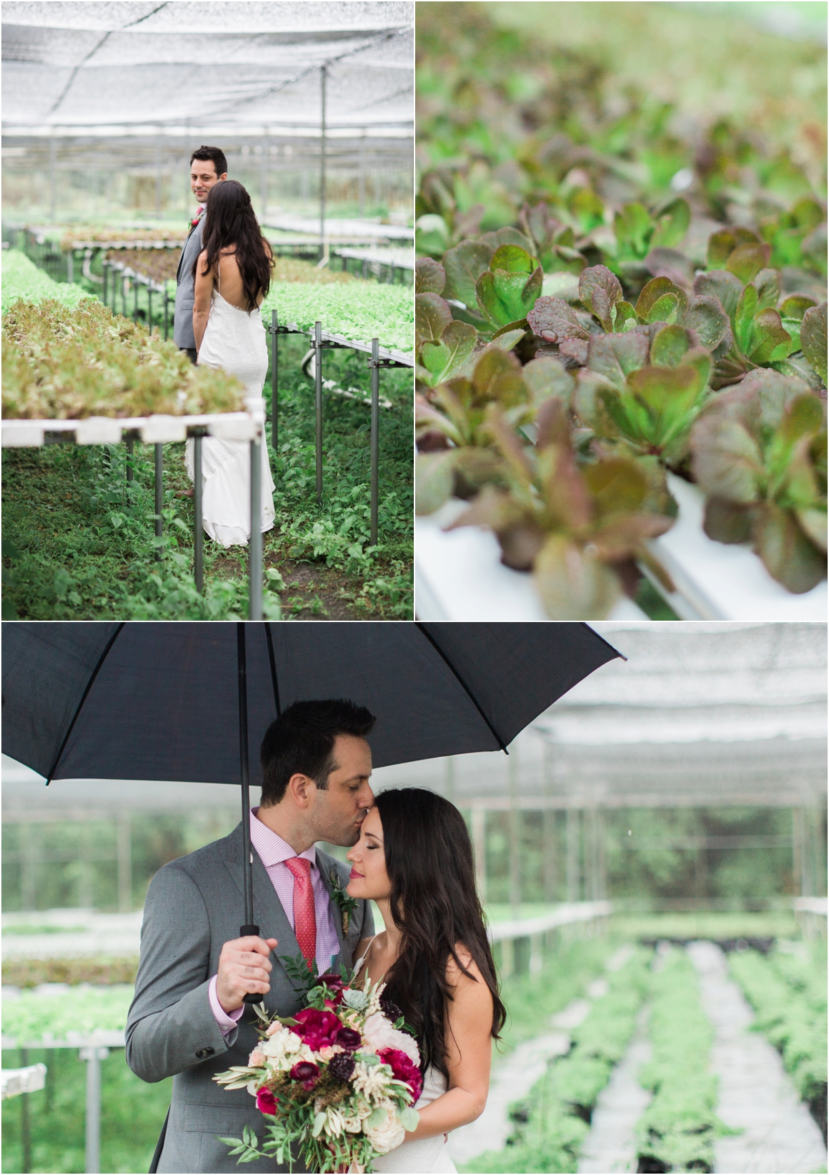 Palm-Beach-Wedding-Photographer-Swank-Farms_0018