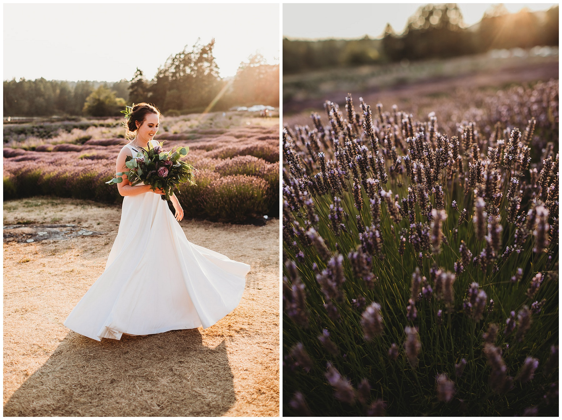 bridal portraits in lavender field