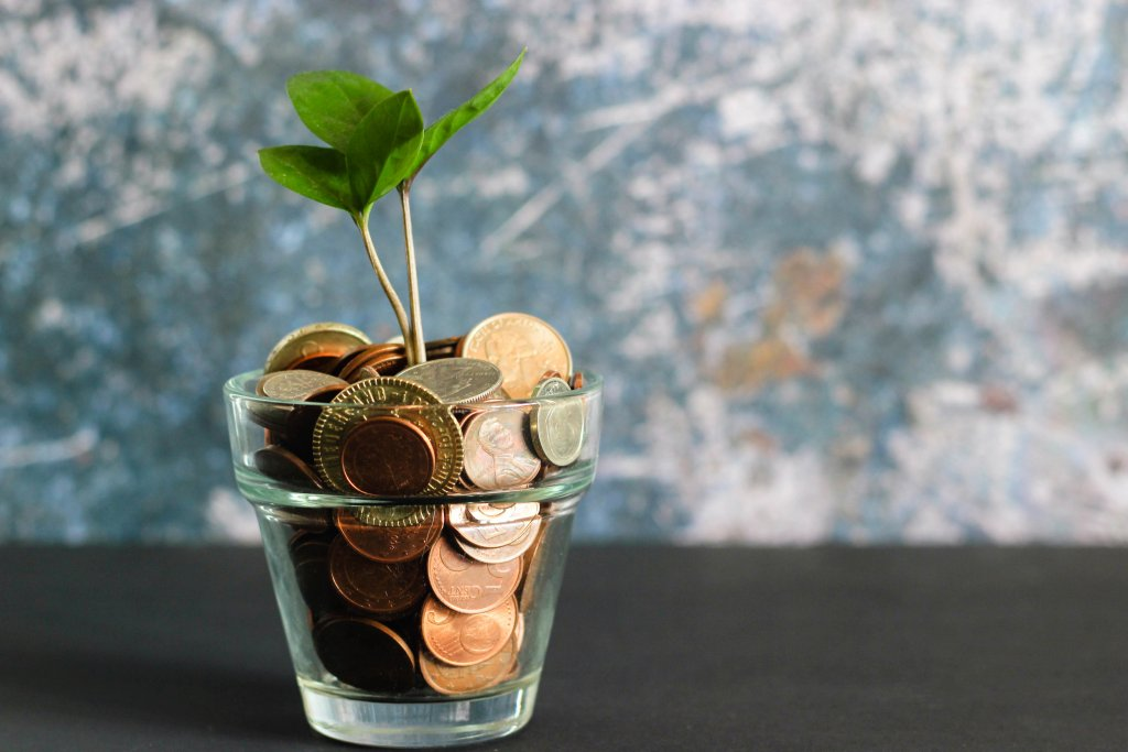 Coins and sprouting plant in cup.