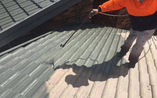 Spary Roof Renovation
